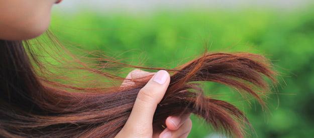 Zdrava i njegovana kosa